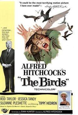 The-birds