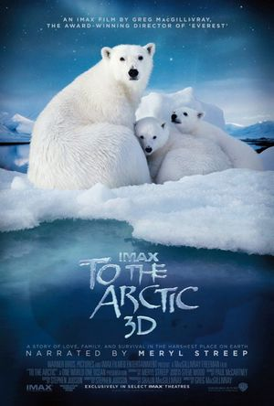 To_the_arctic_3d