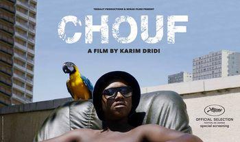Chouf2