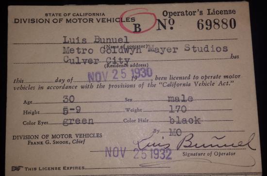 Bunuel's Driver's License